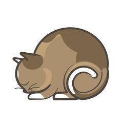 cute sleepy brown cat vector image vector image