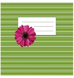 Gerbera on the green yellow background vector
