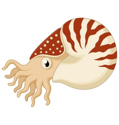 Cartoon nautilus vector