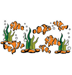 Nemo clown fish vector