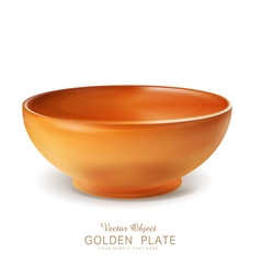 object - an orange plate bowl isolated vector image