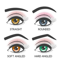 Popular female eyebrows shape set vector