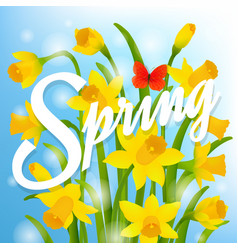 Spring post card with narcissus vector