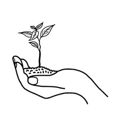 Growing plant or sprout with soil in left hand vector