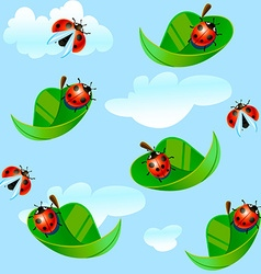 Ladybug fly on a leaf vector