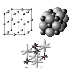 Ionic crystals the structure of sodium chloride vector