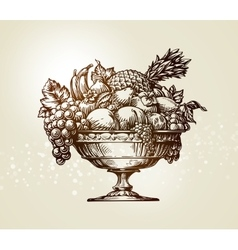 Vintage fruit bowl sketch vector