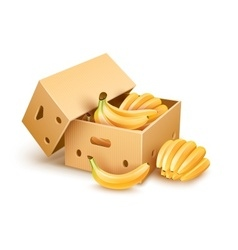 Cardboard box with banana vector