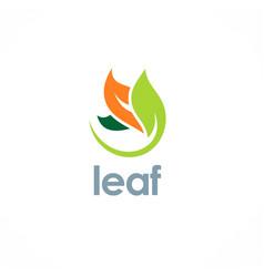 color leaf organic logo vector image