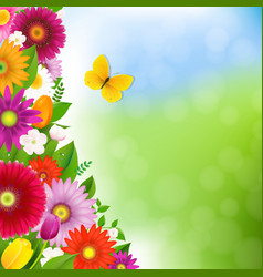 Spring time postcard with butterfly vector