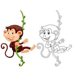 Animal outline for monkey hanging on vine vector