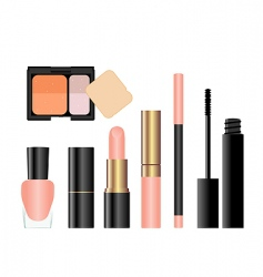 Makeup collection vector