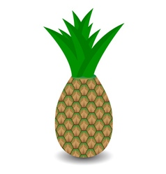 Pineapple with green leaf vector