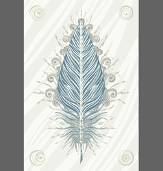 Feather vintage card vector