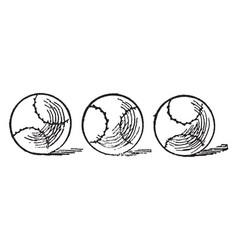 Three balls vintage vector