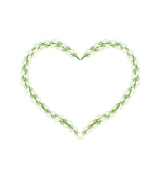 White Jasmine Flowers in Heart Shape Frame vector image