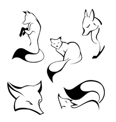 Set of foxes in curve lines vector image
