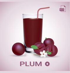 set of plum juice and fresh ripe fruits vector image