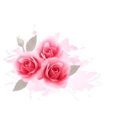 Holiday gift cardl with three pink roses vector image
