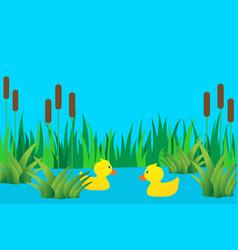 ducklings in lake vector image