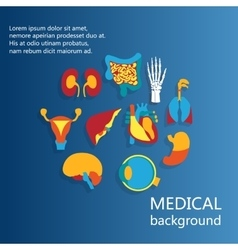 Concept of medical background human anatomy vector