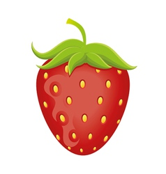 delicious strawberry vector image