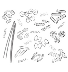 Types of pasta - hand-drawn vector image vector image