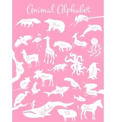 Animal alphabet poster for children animals vector
