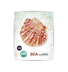vintage marine background with seashell vector image