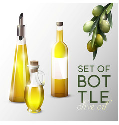 Realistic olive oil template vector