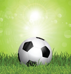 Soccer ball in grass vector image