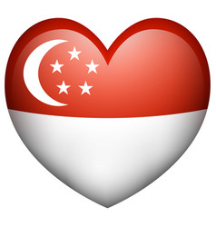 Flag icon design for singapore vector