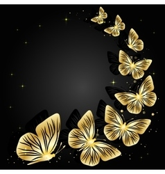 Gold butterflies on dark background vector