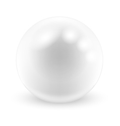 Pearls white vector