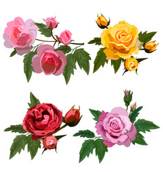 set with roses vector image vector image