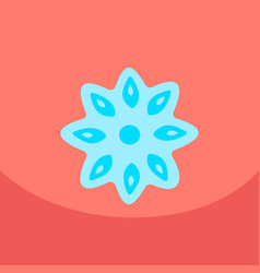 Stars of anise isolated on the color background vector