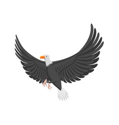 eagle flying bird vector image