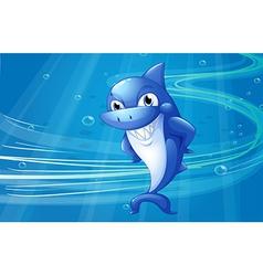 A blue shark under the sea vector image