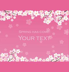 Cherry blossom background 12 vector