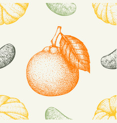 ink hand drawn tangerine background vector image vector image