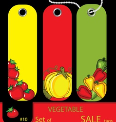 Sale vegetables autumn tags vector