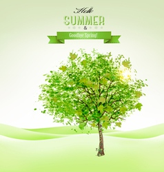 Summer background with a green tree vector image