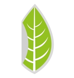 Leaf plant nature isolated icon vector