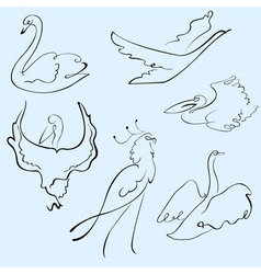 birds design set vector image