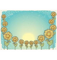 sunflower vintage background vector image vector image