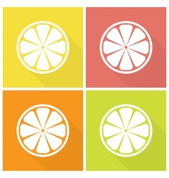 Citrus fruits icons vector