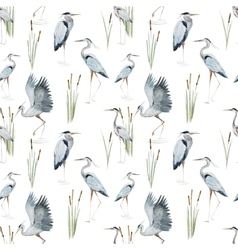 Watercolor heron pattern vector image