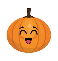 pumpkin vegetables comic character vector image