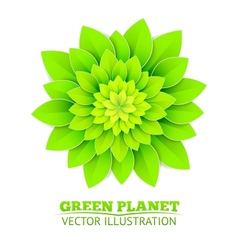 Background with green flower vector image