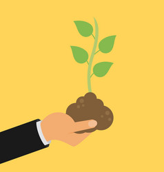 hand holding seedling flat design vector image vector image
